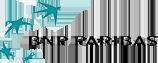 Logo BNP Paribas, partenaire de l'ESP
